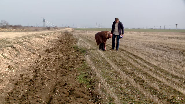 Programul ce ar fi trebuit sa ajute fermierii le pune de fapt piedici. Ce trebuie sa faci pentru bani prin