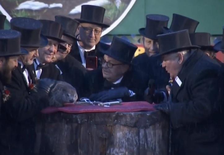 Celebra marmotă Phil a prezis cum va fi iarna anului 2020. VIDEO