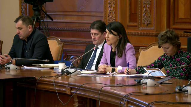 Guvernul Orban 2 la audieri. Adrian Oros, aviz pozitiv. Costache, Boloș, Alexandru și Bode, aviz negativ