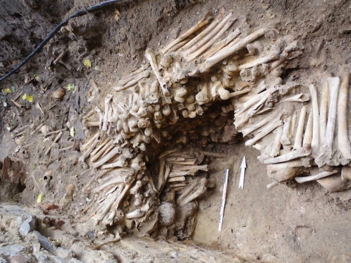 FOTO. Descoperire macabră făcută de o echipă de arheologi, sub o biserică din Belgia