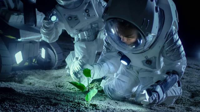 NASA oferă 500.000$ celui care va veni cu o idee privind meniul astronauților care vor ajunge pe Marte