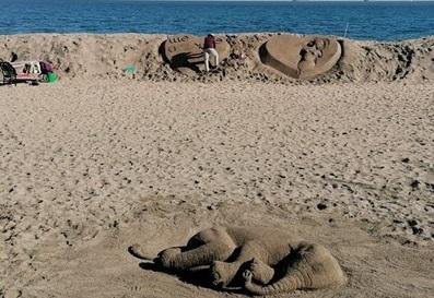 Supriza oamenilor care au observat un elefant pe o plajă din Bulgaria. Ce era, de fapt. FOTO