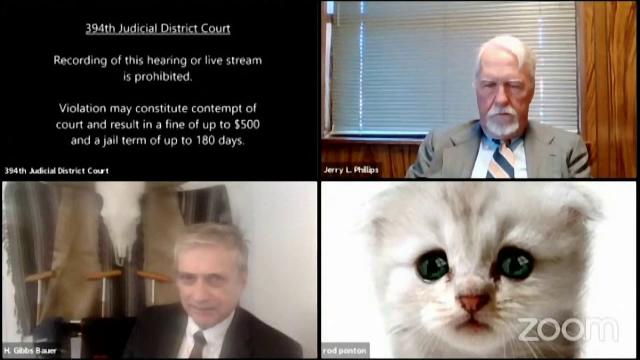 Cum a apărut un avocat într-o videoconferință cu un judecător. Imaginile au devenit virale