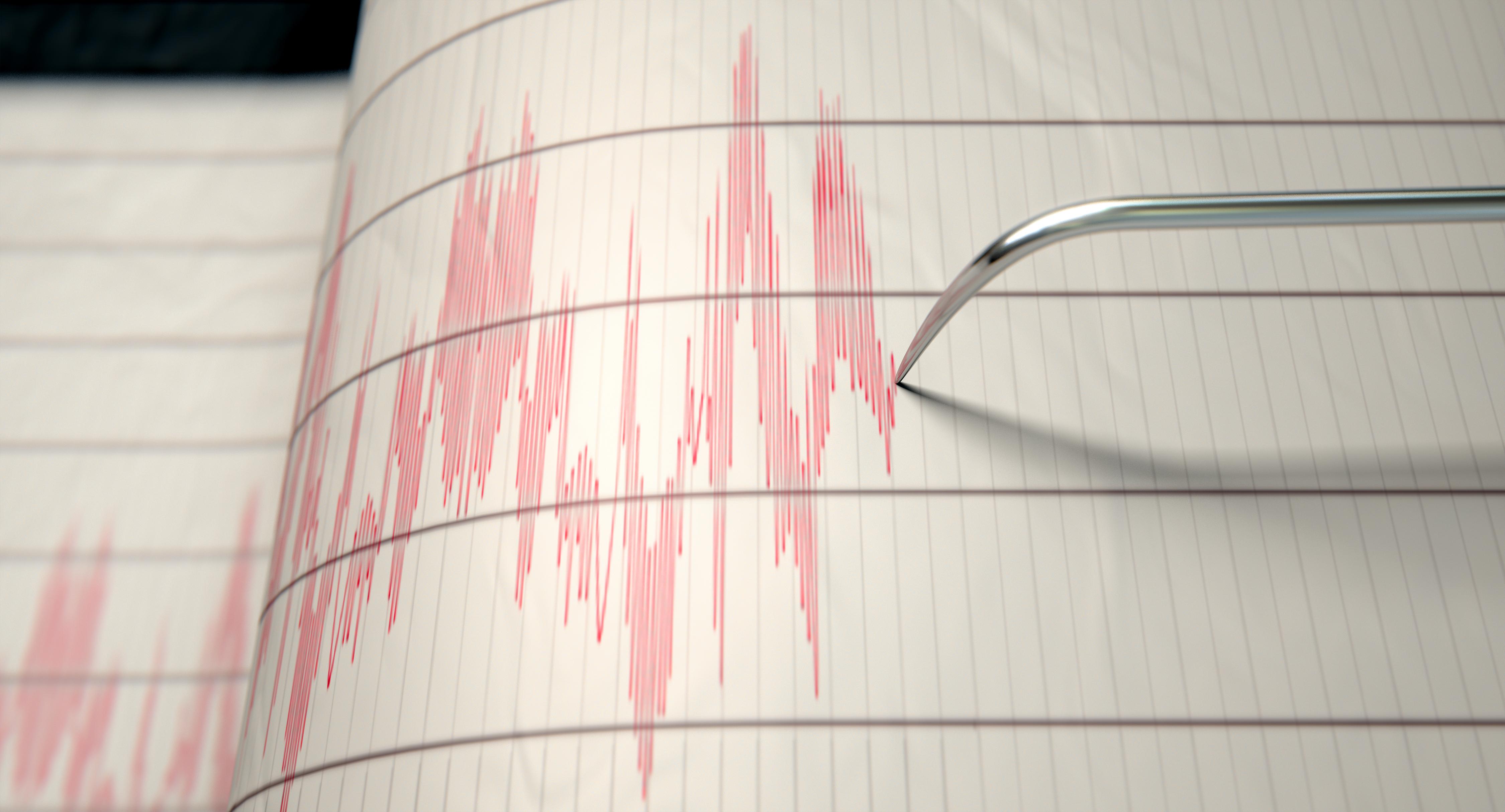 Un cutremur cu magnitudinea 5,9 s-a produs în largul Indoneziei. Șase persoane au murit