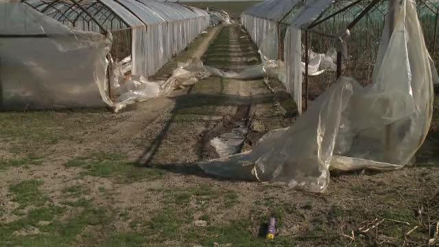 Pierderi uriașe pentru producătorii de legume din Olt. Zeci de solarii au fost distruse