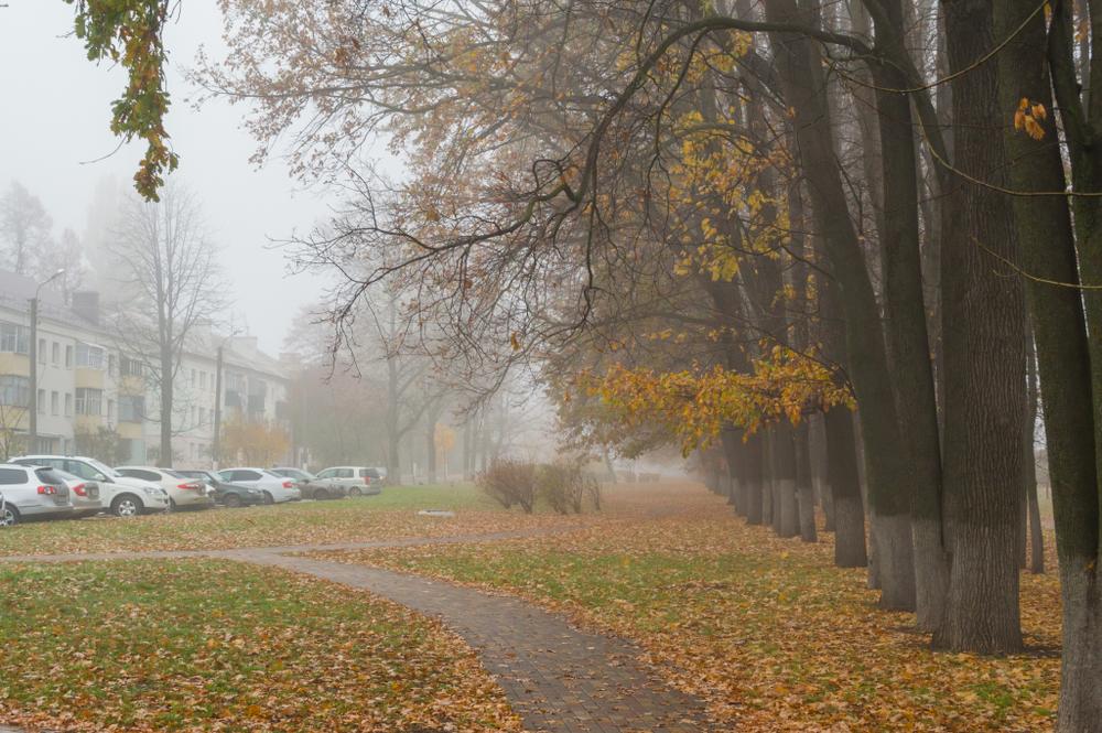 Vremea se încălzeşte în această săptămână. După 27 februarie, valorile termice scad şi revin precipitaţiile