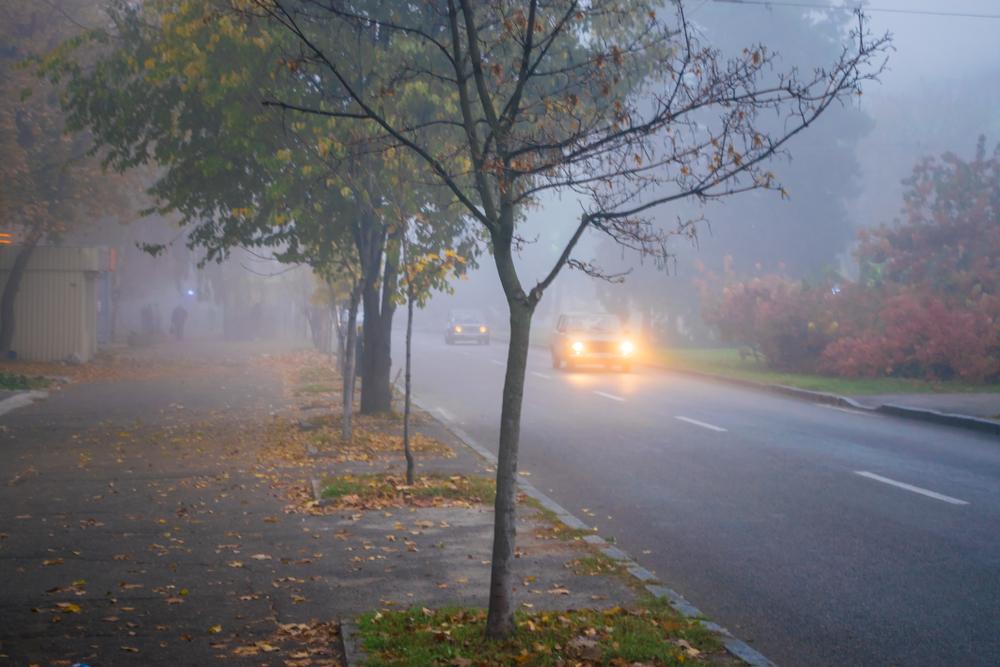 Alertă ANM: Cod galben de ceață în 25 de județe din țară