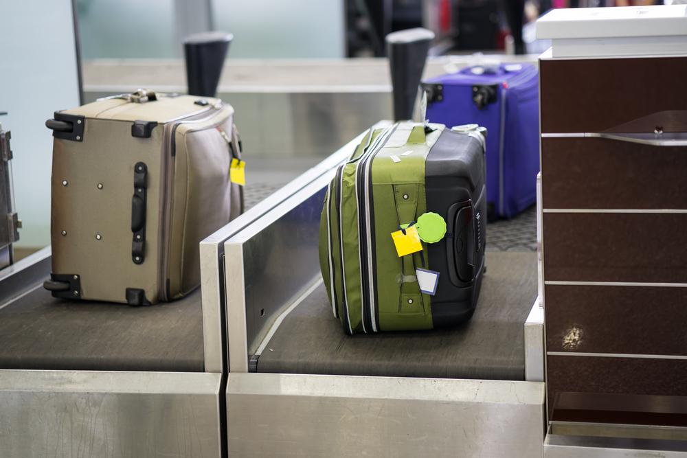 Creatura descoperită în bagajele unui călător, pe un aeroport din SUA. FOTO