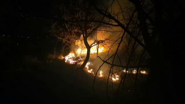 Incendiu în județul Dâmbovița. Peste 10 hectare de vegetație au ars