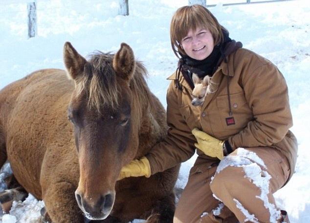 O femeie din Canada a cazut de pe cal si s-a trezit apoi ca a inceput sa vorbeasca cu accent scotian