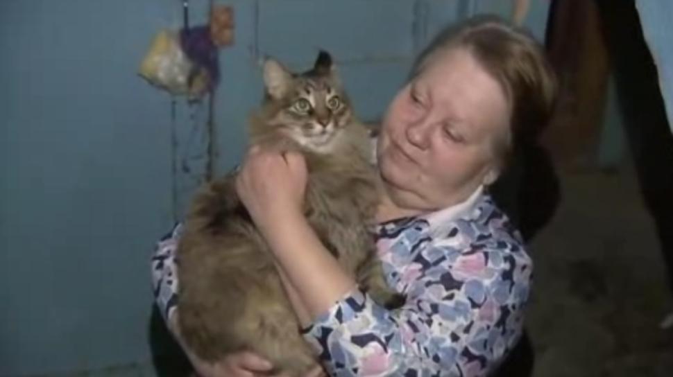 O pisica a salvat viata unui copil abandonat, in Rusia. Cum a devenit Masha eroina orasului. VIDEO