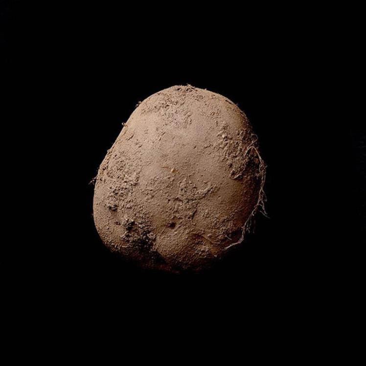 Fotografia unui cartof organic a fost vanduta cu 1 milion de euro.