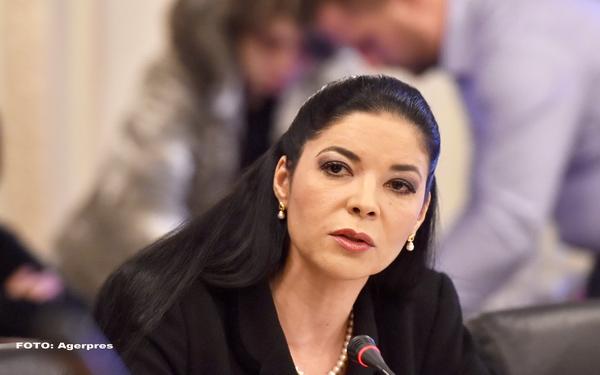 Ana Birchall, propusa ministru interimar al Justitiei.