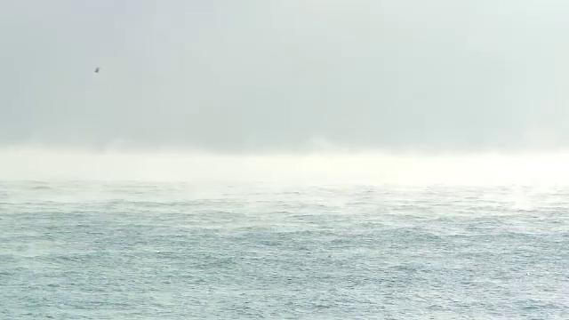 Fenomen spectaculos pe litoral: Marea Neagra