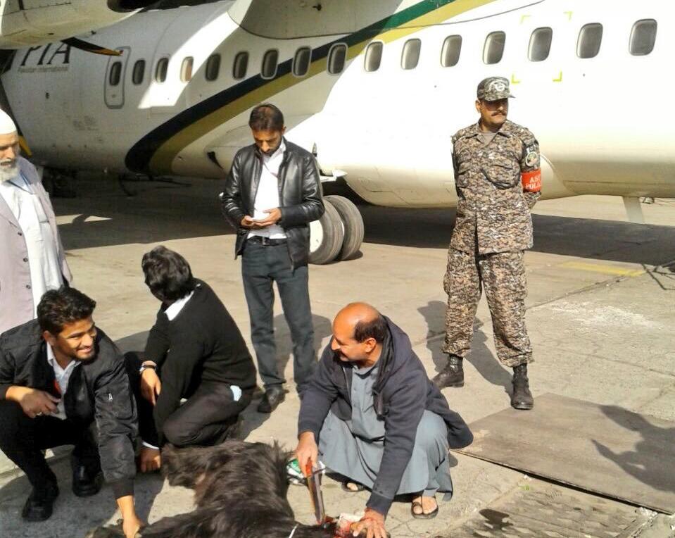 Metoda prin care echipajul unui avion pakistanez s-a asigurat ca zborul va decurge fara probleme.