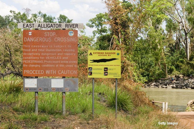 Australian, ucis de un crocodil de 3,3 metri lungime. Reptila fost ucisa la fata locului de catre polististi