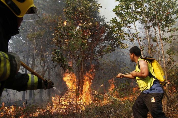 Stare de urgenta nationala in Chile din cauza unor grave incendii de vegetatii. Liderii au cerut ajutorul mai multor tari