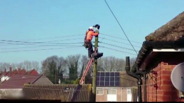 Au oprit electricitatea pe o strada intreaga ca sa salveze o pisica. Cum a ajuns felina pe un stalp de inalta tensiune