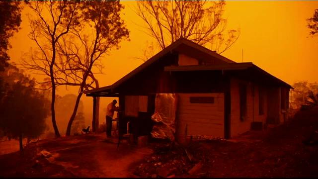 Incendiile de vegetație din Australia ar putea fi stinse într-o oră, cu ajutorul Inteligenței Artificiale
