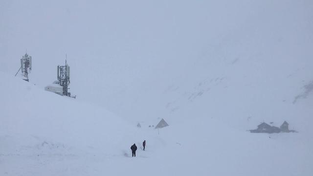 Două persoane, surprinse de avalanșă în Elveția. Cum au fost salvate de câinii lor