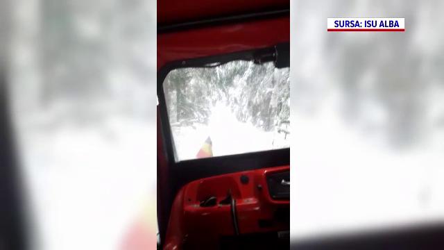 Sute de oameni au rămas fără electricitate, după ce mai mulți copaci au căzut peste firele de curent