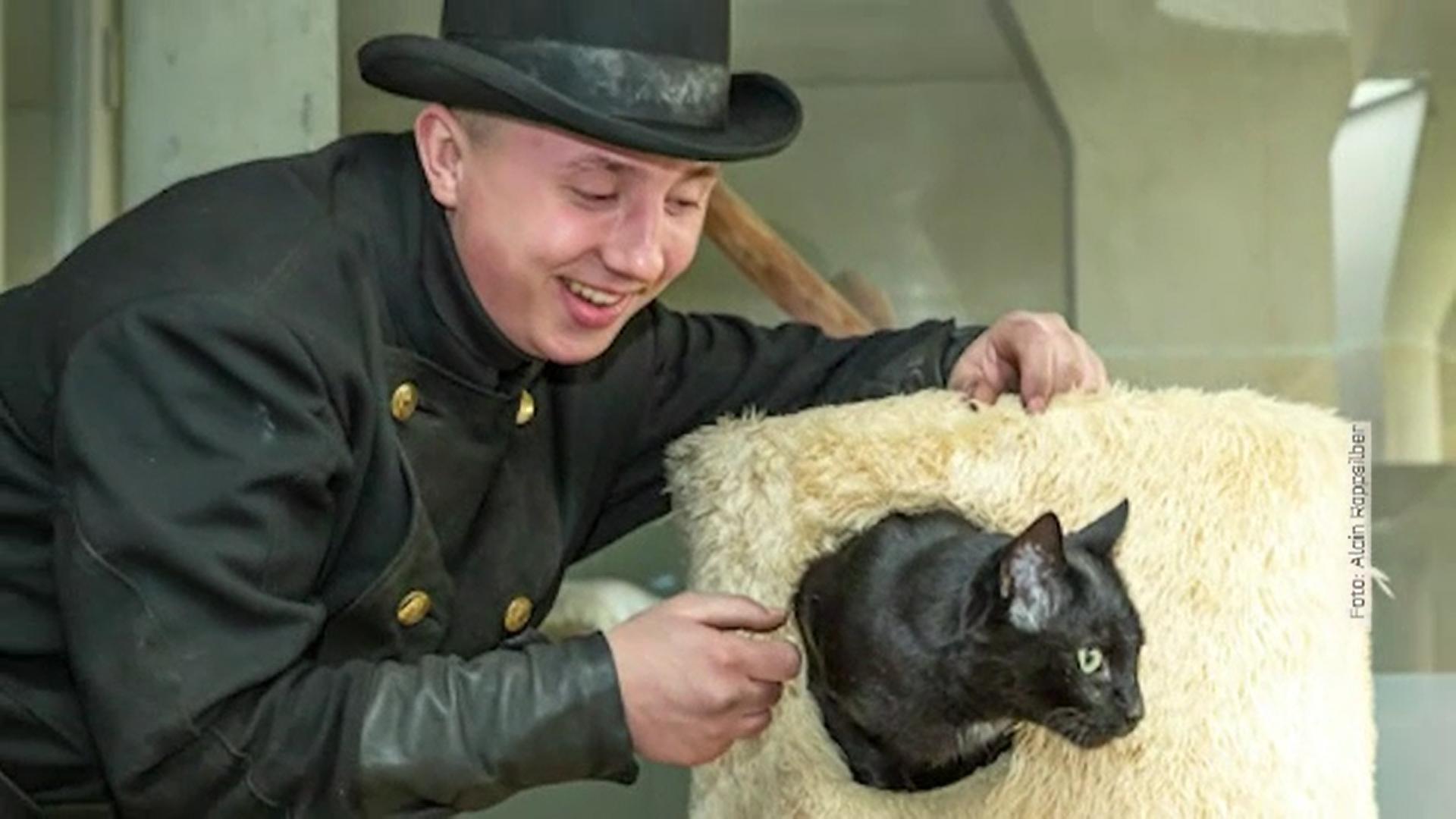 Metoda inedită prin care coșarii din Berlin vor să schimbe ideea că pisicile negre aduc ghinion