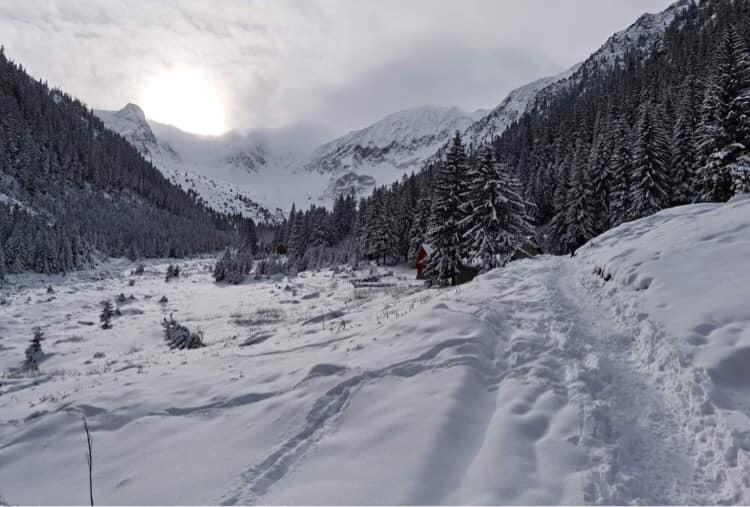 Iarnă de vis în Țara Făgărașului. Peisaje de basm, liniște și senin la poalele munților Făgăraș
