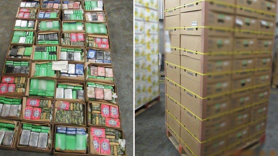 FOTO. Droguri de 85 milioane de euro ascunse în cutii de banane. Unde au fost găsite