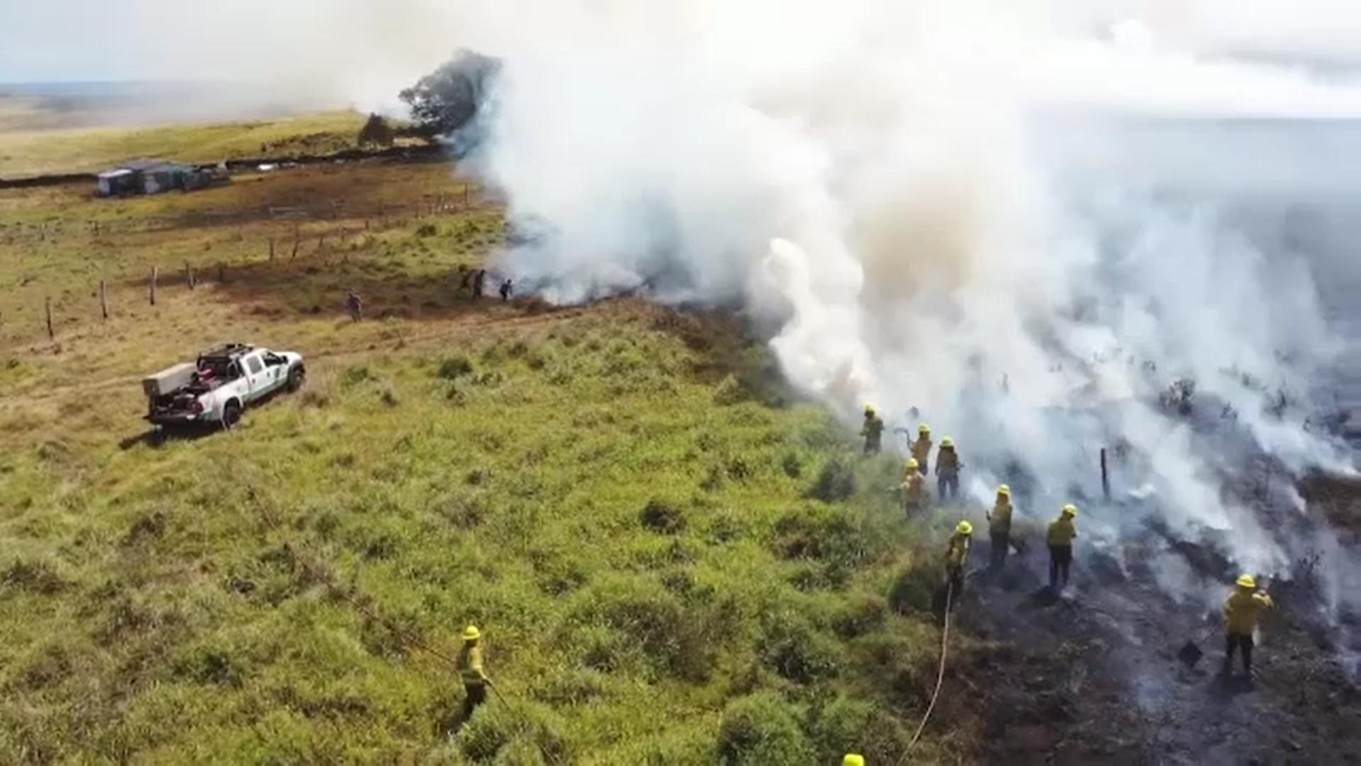 Incendii uriaşe de vegetaţie pun în pericol fascinanta Insulă a Paştelui din Chile