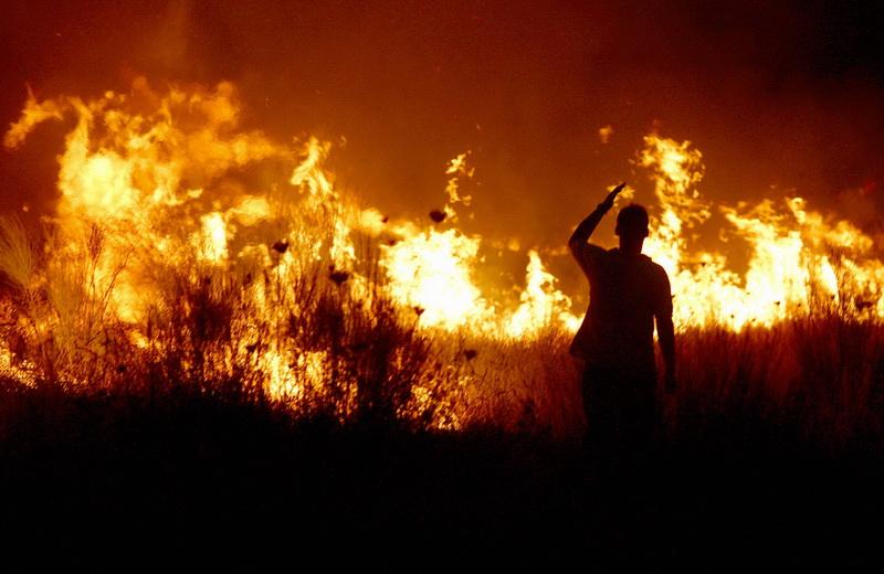 Canicula a adus focul pe pamant in Ierusalim. Un incendiu de vegetatie a facut prapad