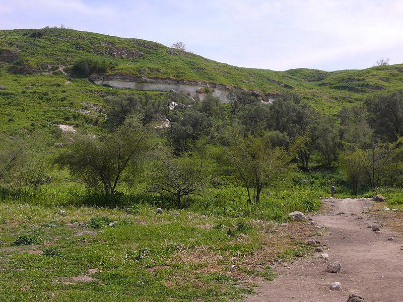 Biblia, contrazisa de o descoperire recenta din sudul Israelului. Ce ar putea schimba istoria