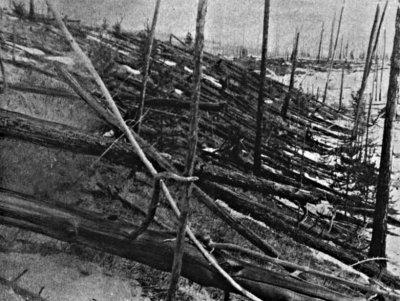 Tunguska:104 ani de la explozia misterioasa de 1000 de ori mai puternica decat bomba de la Hiroshima