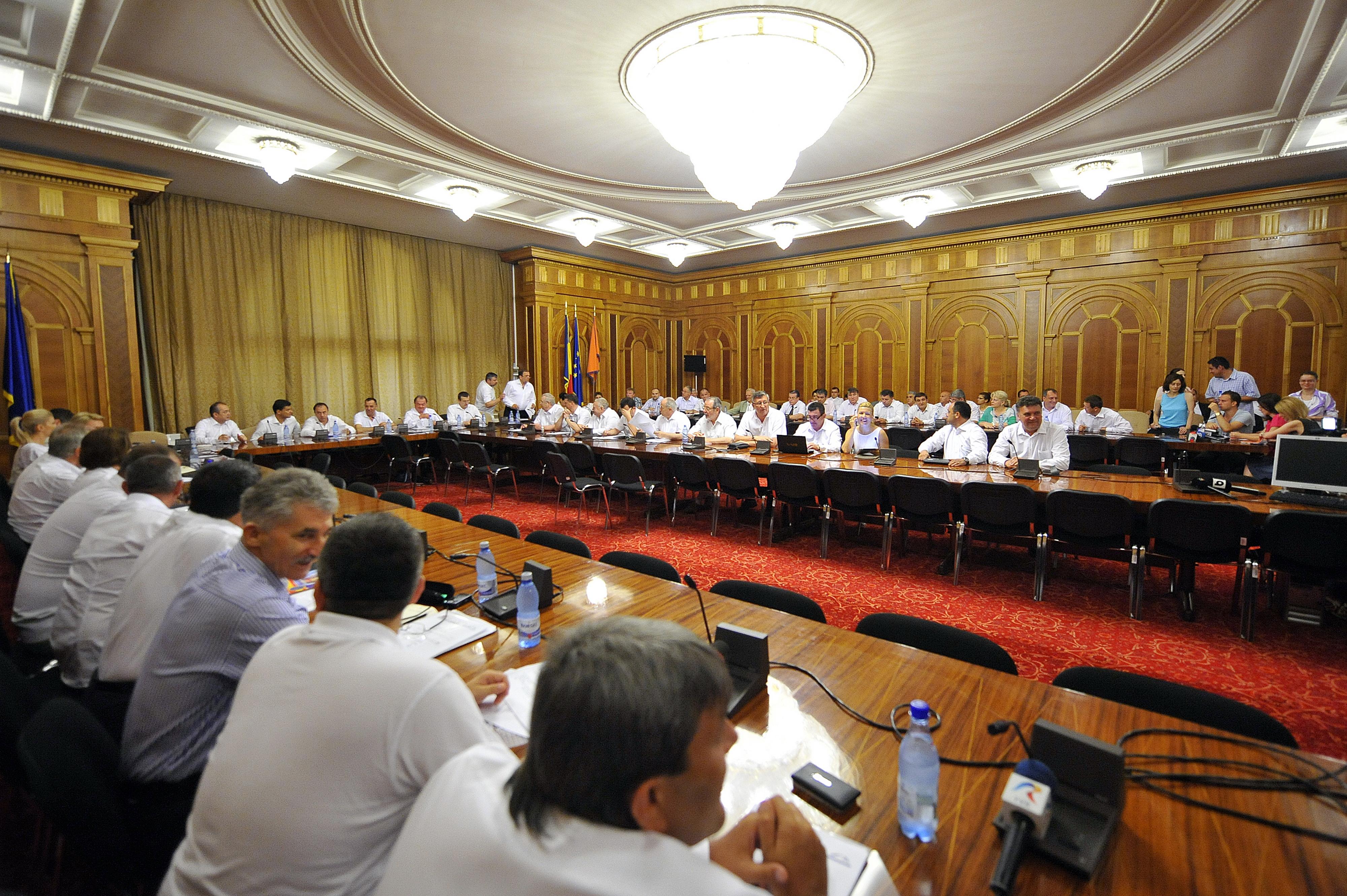 Sulfina Barbu: PDL anunta dupa ce isi alege noua conducere pe cine sustine pentru prezidentiale