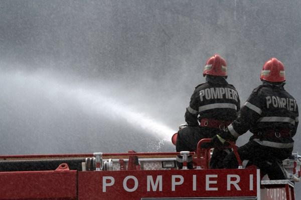 Incendiu intre Rasinari si Paltinis pe o suprafata de 12 hectare de vegetatie