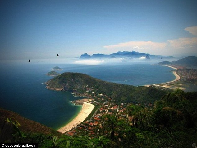 Biserica Catolica din Brazila a taiat o padure tropicala veche de 300 de ani pentru vizita Papei