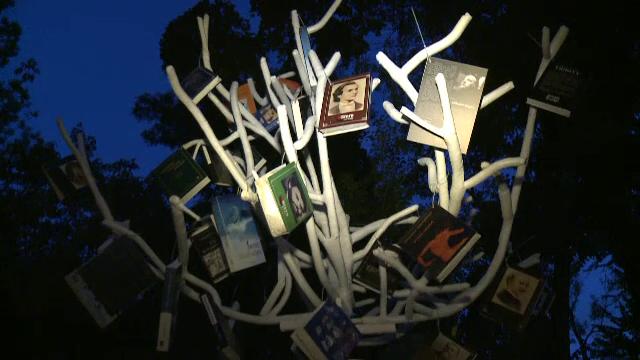 Copacul din parcul Cismigiu in care