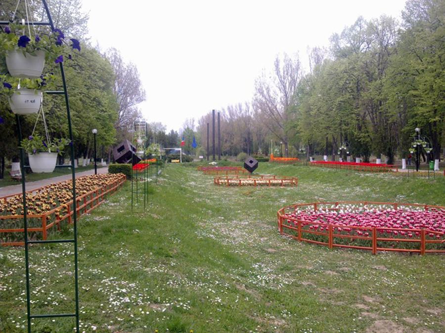 Cel mai mare parc din Ploiesti, invadat de tantari si sobolani. Primarul orasului face apel la