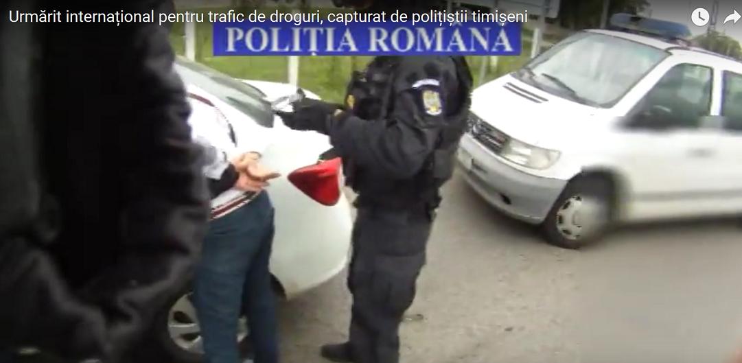 Traficant de droguri din Italia, capturat pe strada de politistii din Timis. VIDEO