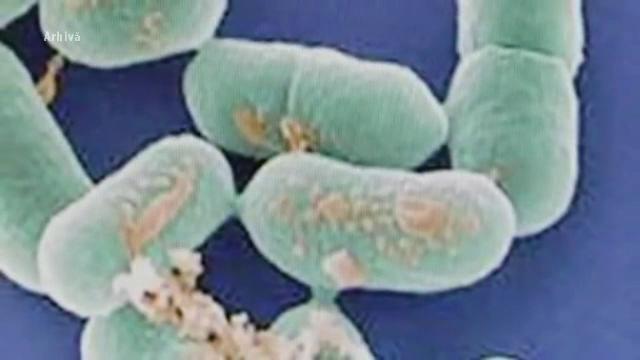 România, ameninţată de noi epidemii. Cele 3 boli care putea lovi în următoarele săptămâni