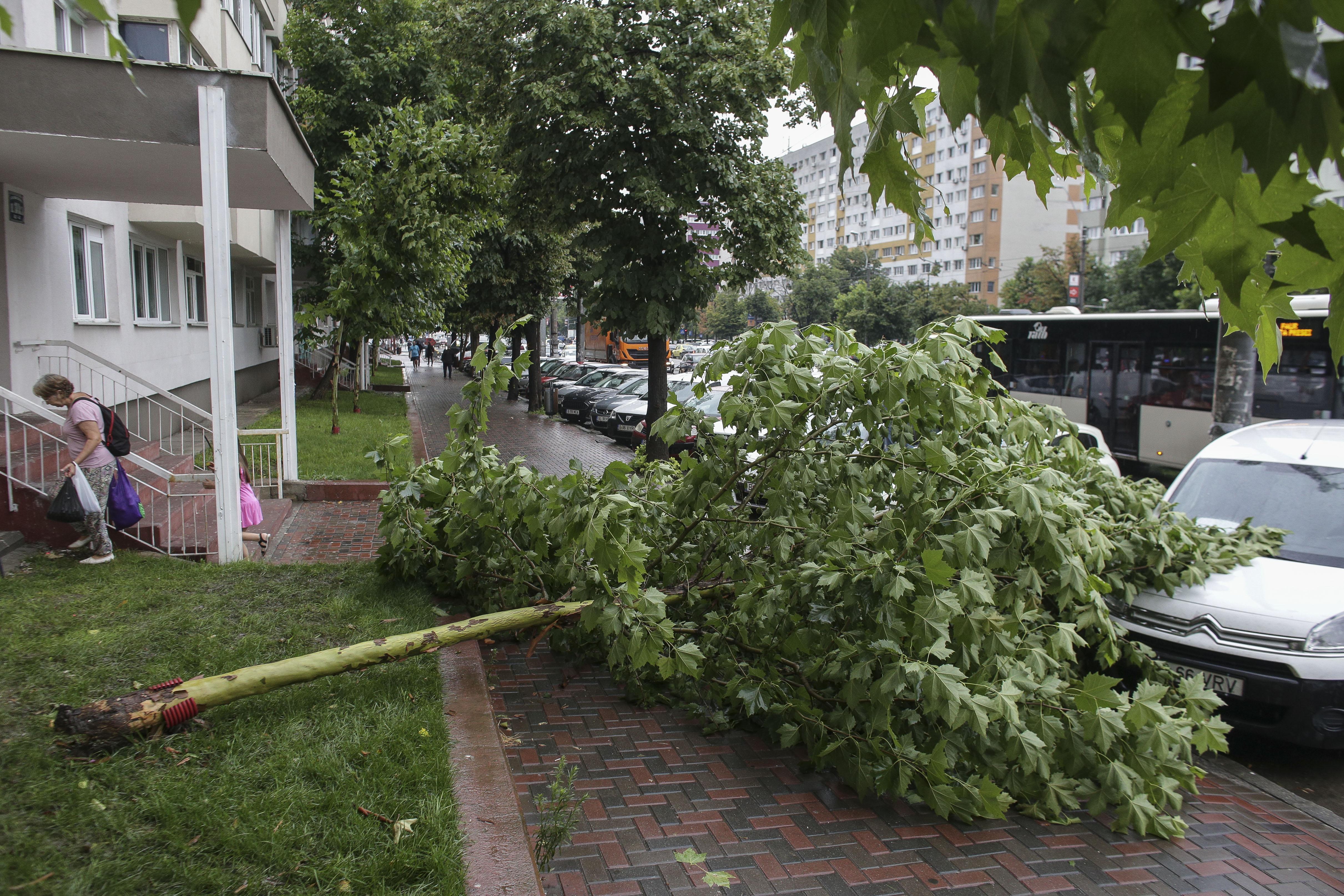 Fenomene meteo extreme în Capitală: ploi torenţiale, vijelii şi grindină