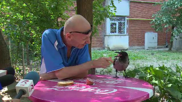 Cioara devenită mascota unui cartier din Galaţi. Oamenii o pun să le cureţe seminţele
