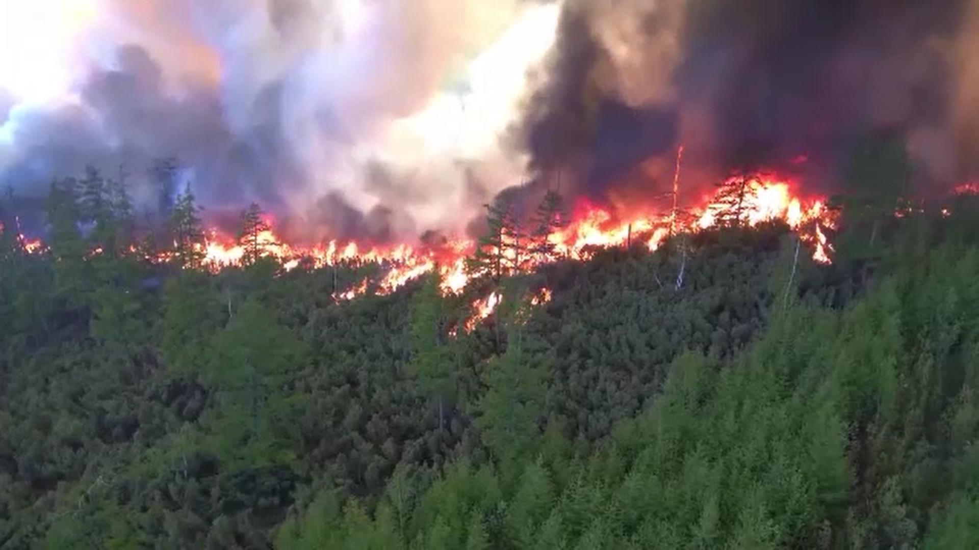 Temperaturile ridicate au produs peste 50 de focare de incendiu în peninsula Kamchatka