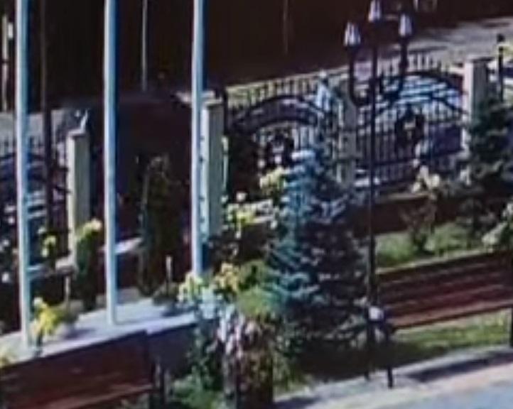 VIDEO. Bărbat accidentat mortal pe trecerea de pietoni. Momentul a fost filmat