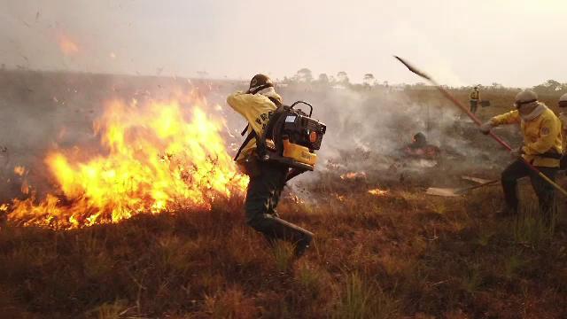 Incendiile de vegetație din California se extind rapid spre zonele locuite