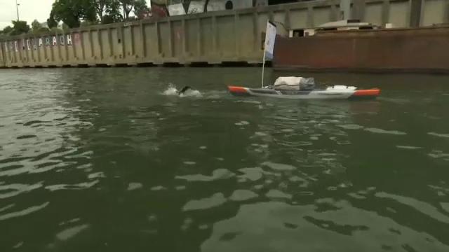 Un tânăr francez vrea să înoate pe fluviul Sena 780 de kilometri, în 50 de zile