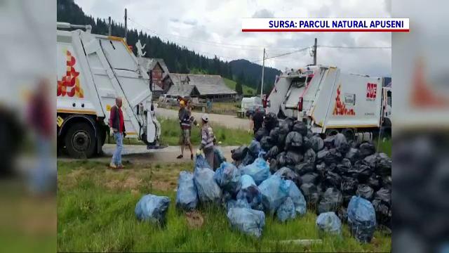 Peste 100 de voluntari au adunat gunoaiele din zona turistică Padiş, din Munții Apuseni