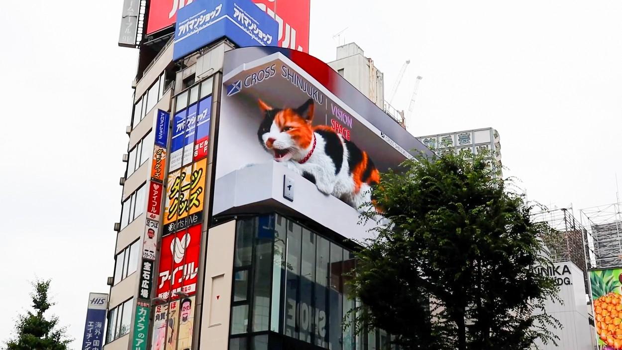 O pisică 3D uriașă a apărut pe un panou publicitar în Tokyo. GALERIE FOTO