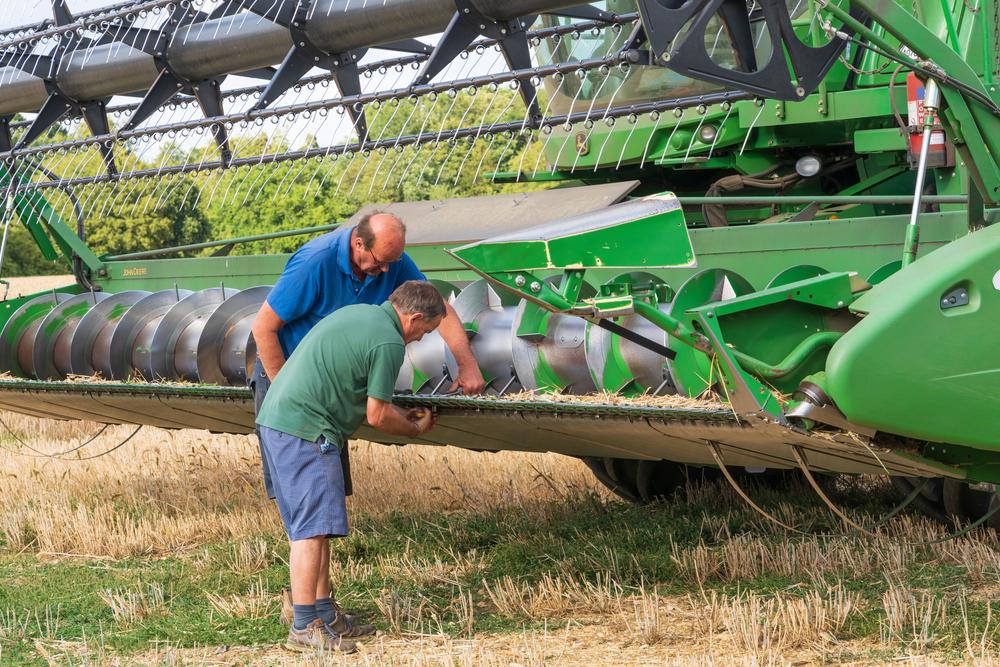 """Criză de lucrători în agricultură. Fermierii dau salarii și cu 46% mai mari. """"800 de euro pentru un muncitor necalificat"""""""