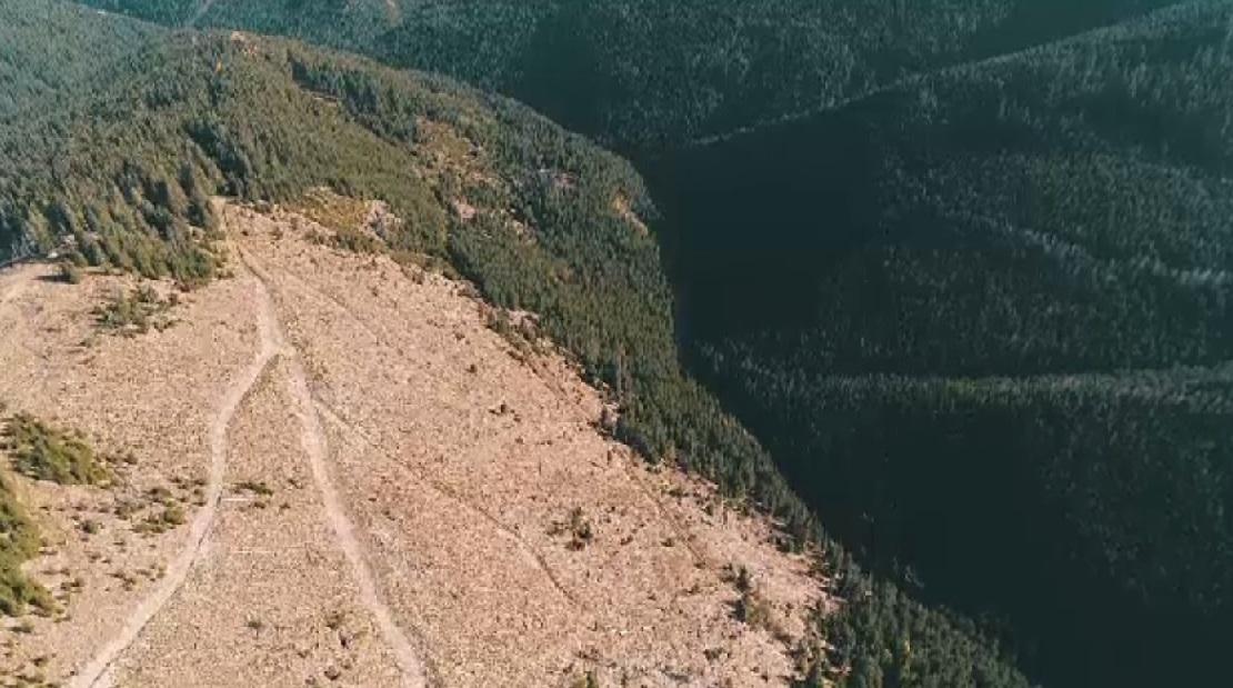Un deputat PSD vrea modificarea legii pentru a se putea construi în aproape orice zonă montană cu o condiție