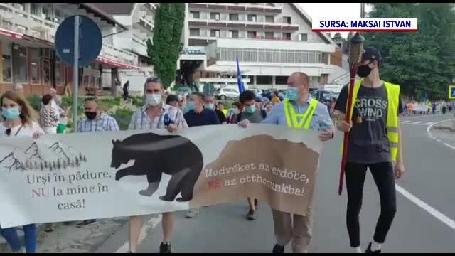 Oamenii din Tușnad au protestat față de problema nerezolvată a urșilor, care coboară în oraș